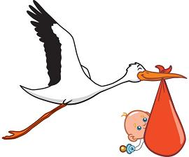 baby-announcement-stork-clip-art-1719679